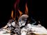 أنوار العقول ونيران العقائد: قراءة في ظاهرة حرق الكتب وإتلافها