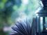 تأمّلات فلسفية في الإيمان في الإيماءة ومعاودتها: مقال في المنهج