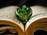 بنية الحُبّ في النصّ القرآني