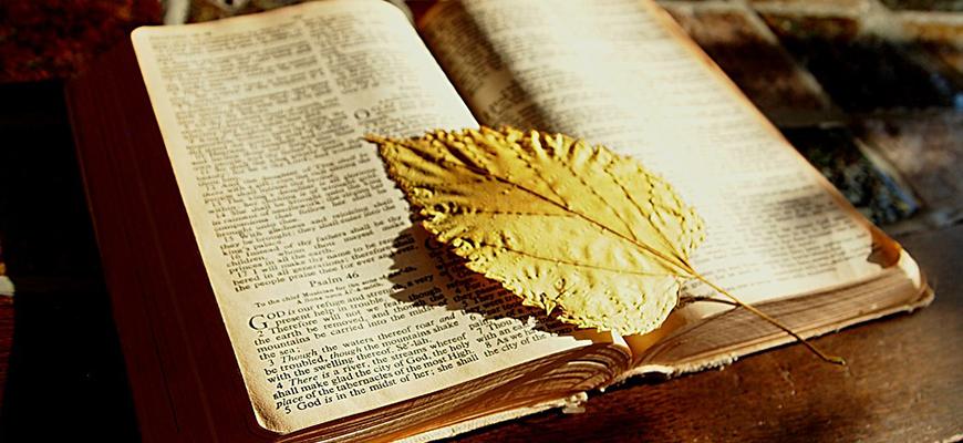 مناهج الحركات النقدية للكتاب المقدّس في الغرب: النقد البلاغي أنموذجًا