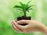 أخلاقيات البيئة؛ تطورها وتياراتها