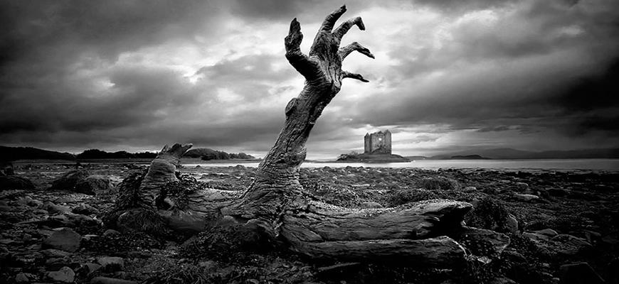 الشرّ المتجذِّر عند كانط: طبيعته وأصله وسبل التخلص منه