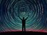 لماذا نزعم أننا موجودون؟ التفكير في الذات والتفكير في الإله عند مونتين وديكارت