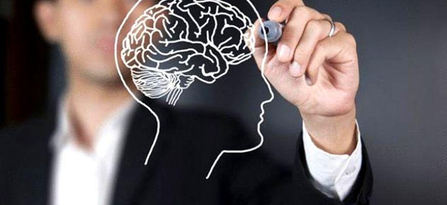 الإنسان والعقل والمصلحة في علم أصول الفقه عند المعتزلة، قراءة في فكر القاضي عبد الجبار الهمذاني (ت. 415 هـ)